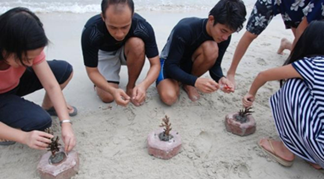 joinus_coral_planting